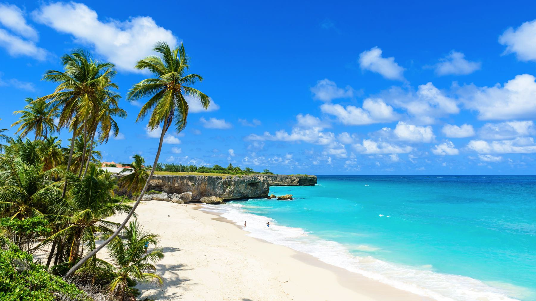 10 Unique Things To Do in Barbados